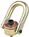 Picture of Metric Swivel Hoist Rings